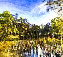 The Bulrush Pond Art by DavidHornchurch