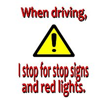 When Driving I Stop for Red Lights Photographic Print