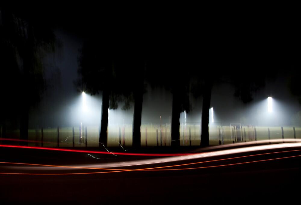 Lumen by Rachel Davison