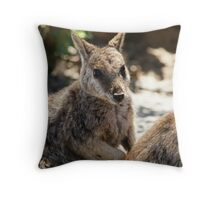 Rock Wallaby Throw Pillow