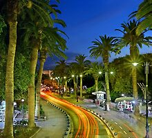 Palm Trees Avenue - Kos island by Hercules Milas