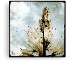 Frozen Instant Canvas Print