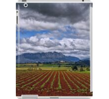 Rural Mount Roland iPad Case/Skin