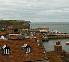 ROOF TOPS OF WHITBY by andysax