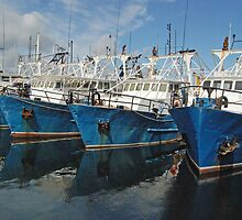 Fishing Fleet, Fremantle Harbour, Western Australia by Adrian Paul
