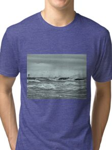 The Fish Are In And The Birds Are Working Tri-blend T-Shirt
