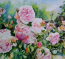 Pink Roses with Honeyeater  by scallyart