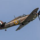 Hawker Hurricane LF363 by Lee Wilson