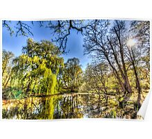 The Pond Side Trees Poster