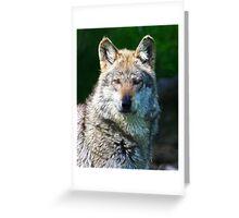 GREY WOLF FRACTALIUS Greeting Card