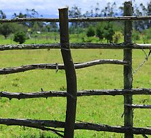 Wood Rail Fence by rhamm