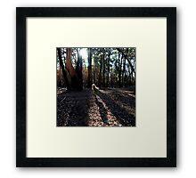 Untitled 4 Framed Print