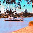 Ferry across the Noosa by georgieboy98