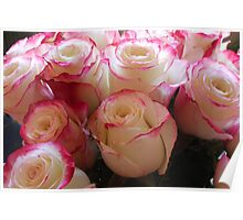Bouquet of Pink and White Roses Poster