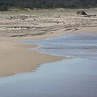 The Beach by Jodie Bennett