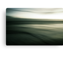 experiments with motion Canvas Print