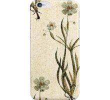 Flower fresco iPhone Case/Skin