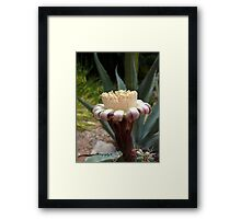 Tough Yet Exquisite Framed Print