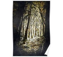 Forest Fireflies Poster
