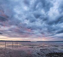Port Susan Sunrise by Jim Stiles