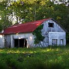 """""""Tucked Away & Forgotten"""" by Melinda Stewart Page"""