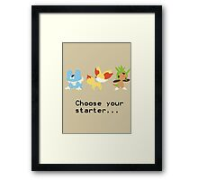 6th Gen Starters Framed Print