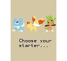 6th Gen Starters Photographic Print