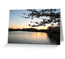 Sunset Blossoms Greeting Card