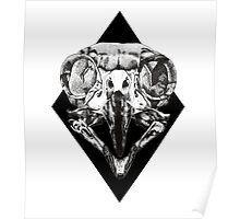 Owl Skull and Dot Work Poster