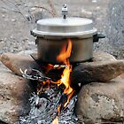 Cooking in nature by mojgan