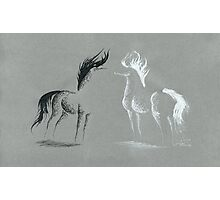 Blinding Darkness: Dark and Light Minimal Abstract Gel Pen Horses Photographic Print