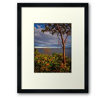 Bouctouche Evening Framed Print