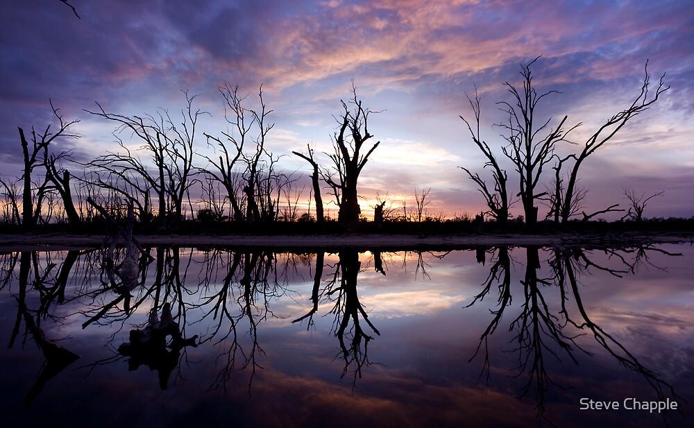 Backwater Sunrise by Steve Chapple