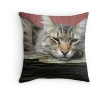 CAT IN THE CRADLE Throw Pillow