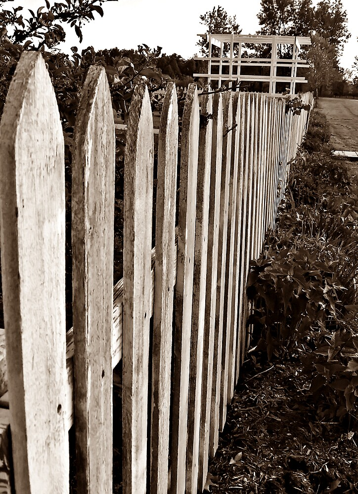 Quot the old picket fence by tracy devore redbubble
