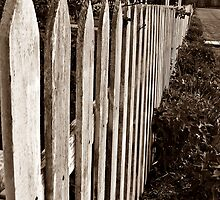 The Old Picket Fence by Tracy DeVore