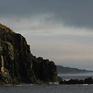 Grey Haven by OldBirch