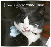 This is good weed, man. Poster