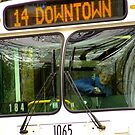 Downtown by Lee Donavon Hardy
