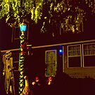 Halloween Yard 2 by SteveOhlsen