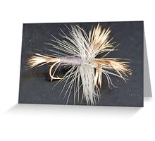 Fly fishing fly Greeting Card