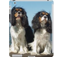 Cool Cavalier King Charles Spaniel iPad Case/Skin