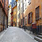 Stockholm. A Thin Street in Gamla Stan by Igor Shrayer