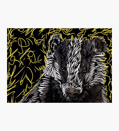 Badger Magic Photographic Print