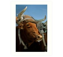 Bovine Art Print
