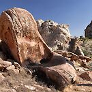 Arizona Strip Petroglyphs by David Lee Thompson