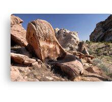 Arizona Strip Petroglyphs Canvas Print