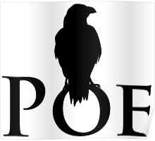 The raven sitting on E. A. Poe Poster