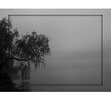 the willow, the fog and me... Photographic Print