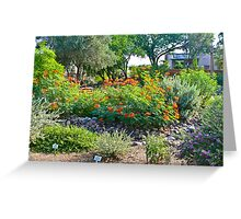 Green Valley Gardeners' Arid Garden Greeting Card